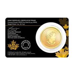 Złota Moneta Gorączka Złota Klondike 1 uncja